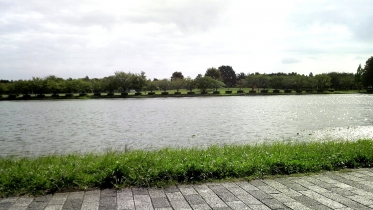 水元公園2-21