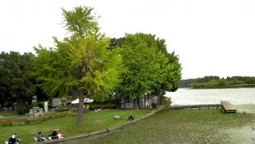 水元公園2-25