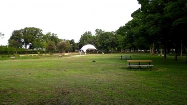 水元公園2-30