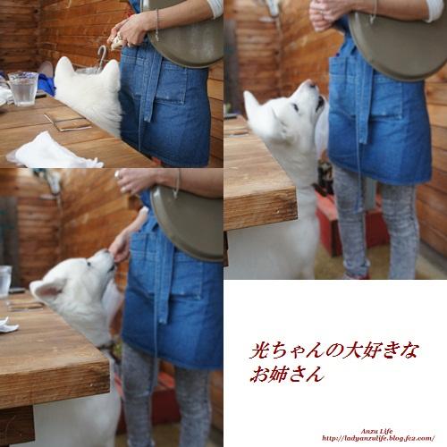 1_20120318230856.jpg
