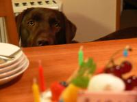 ケーキと2