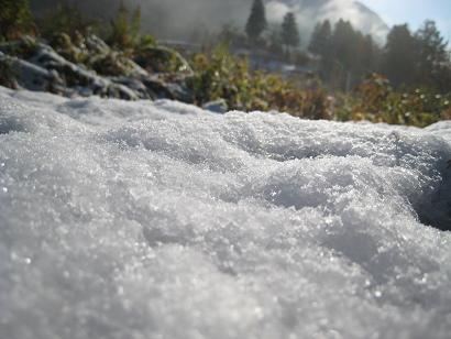 12/10 雪