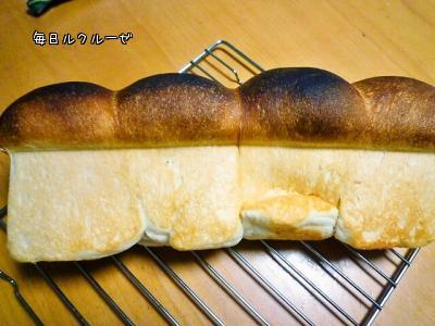 食パンふわふわで横たわり中