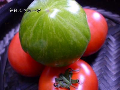 赤いトマトと緑のトマト