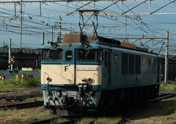 AM9P0000616.jpg