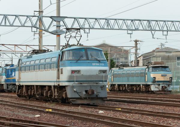 AM9P0000625.jpg