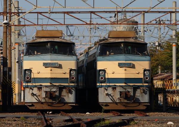 AM9P0000692.jpg