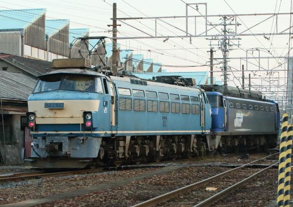 AM9P0000759.jpg
