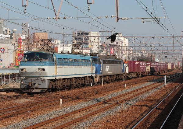 AM9P0000881.jpg