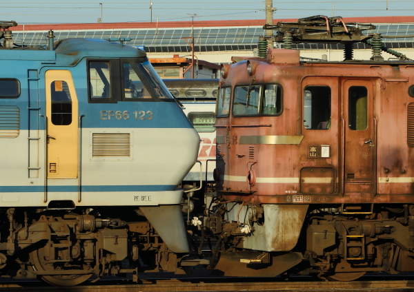 AM9P0000896.jpg