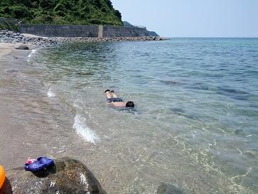海でシャチホコ②