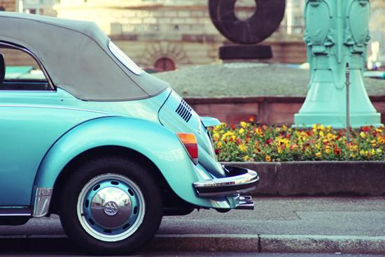 Beetle-145483709.jpg