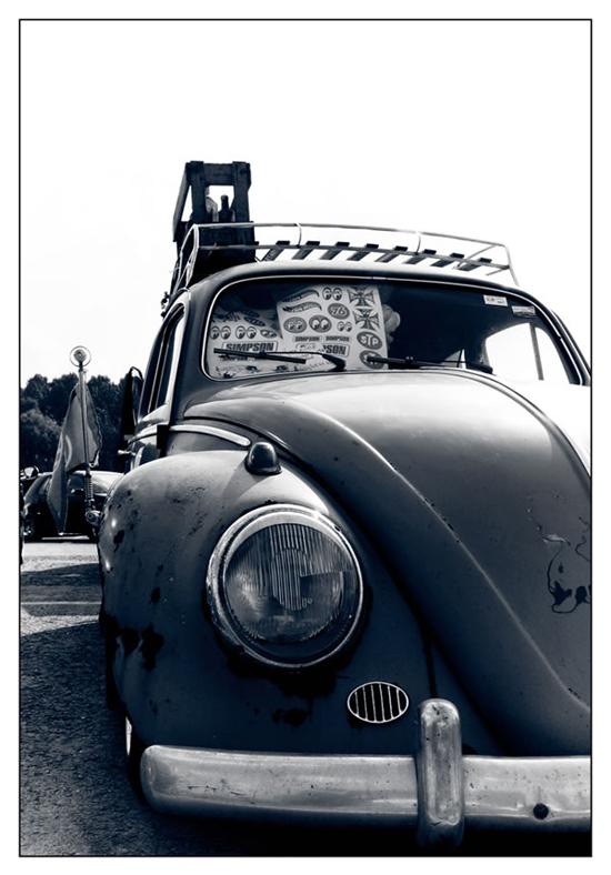 Beetle-78189197.jpg
