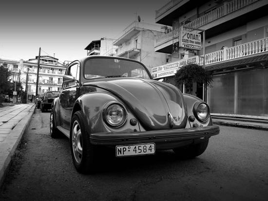 Beetle-80868227.jpg