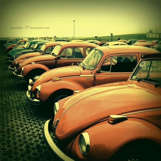 Let-s-beetle-again-106418369.jpg