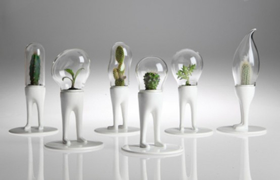 funky-planters-for-cactuses-with-domes-1.jpg