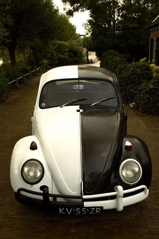 my-67-beetle-64705072.jpg