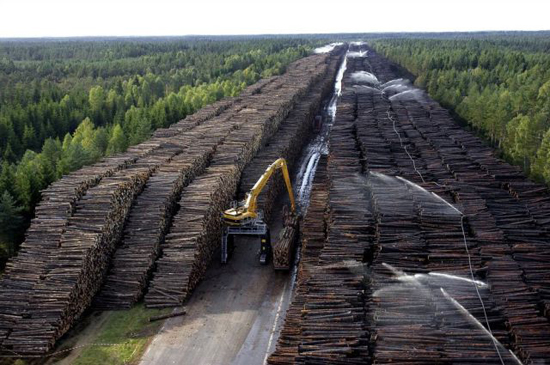 worlds_biggest_timber_storage_6_pics-1.jpg