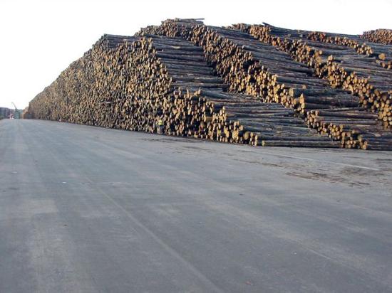 worlds_biggest_timber_storage_6_pics-2.jpg