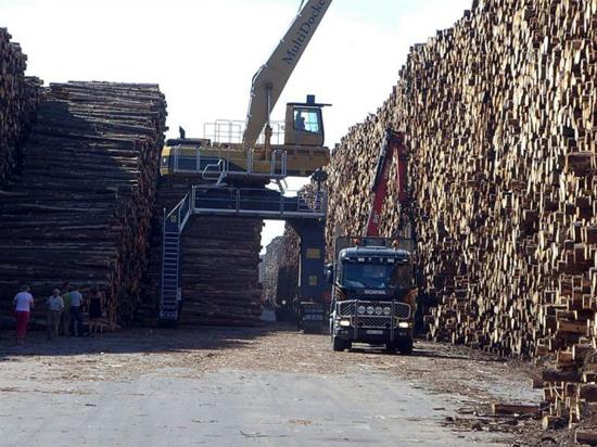 worlds_biggest_timber_storage_6_pics-3.jpg