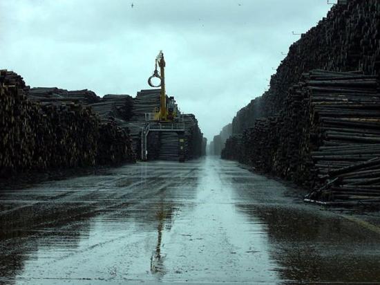 worlds_biggest_timber_storage_6_pics-4.jpg