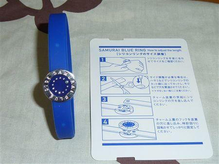 20100415_P1010541_R.jpg