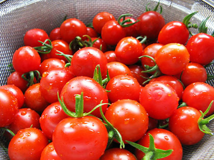 090713-tomato_20100604221733.jpg