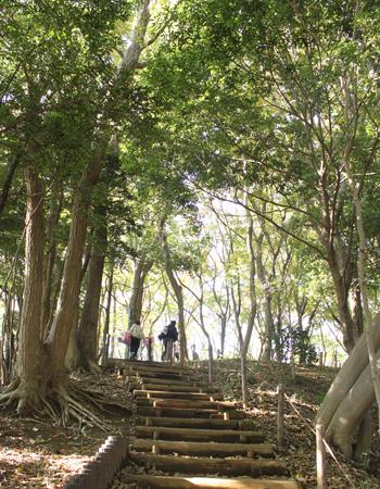 森林公園②