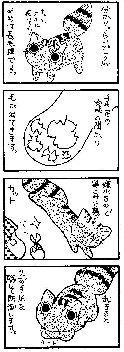 足の毛 UP用