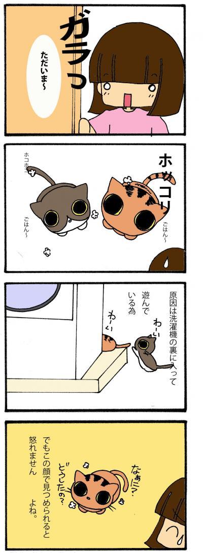縺サ縺」縺薙j_convert_20101213180405