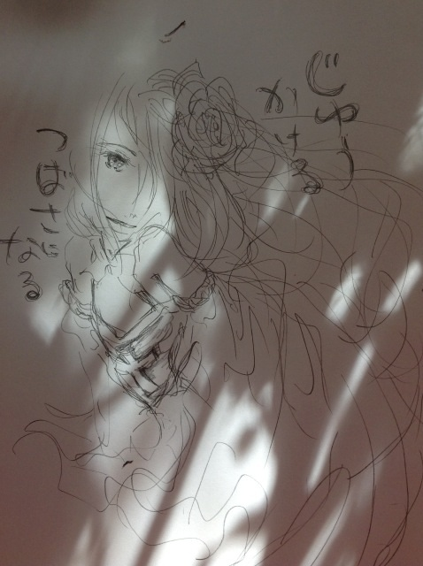 image_20130719212738.jpg