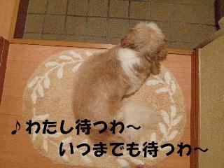 2011102212.jpg