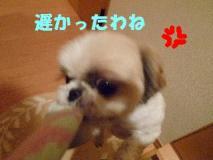 2011110507.jpg