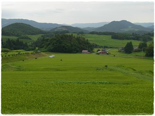 20100813_1.jpg