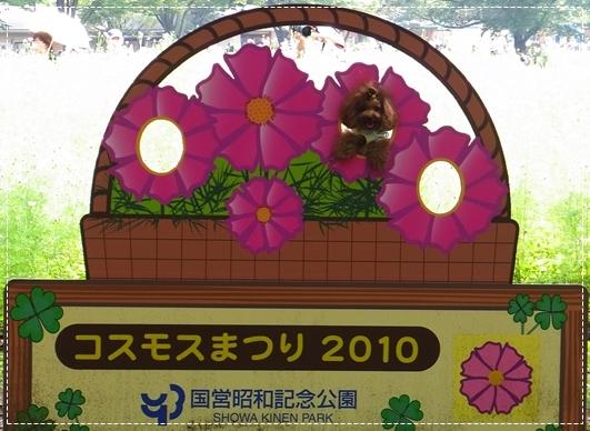 20100919_7.jpg