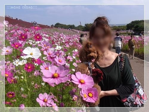 20101016_04.jpg
