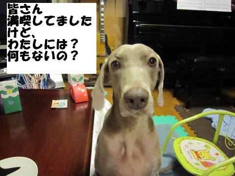 IMG_0819_convert_20121227111336.jpg