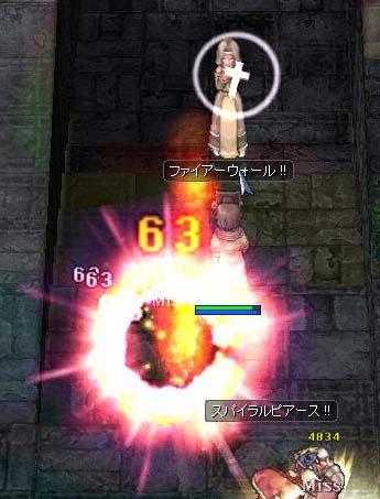 10-09-03(セージしぼんぬ)