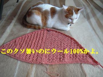 100906-1.jpg
