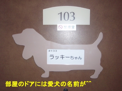 aP1200126.jpg
