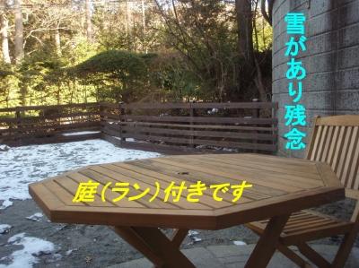 aP1200139.jpg
