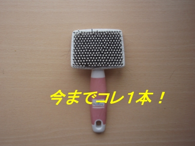 aP8080017.jpg