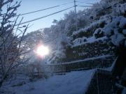 2012年1月25日 002