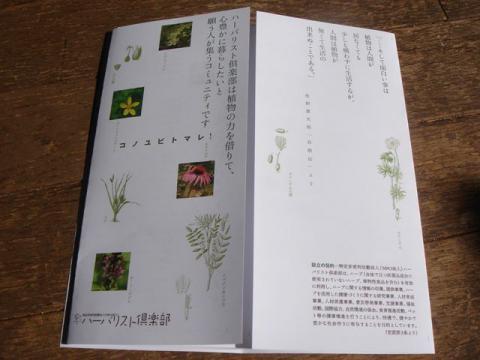DSC09268_R.jpg