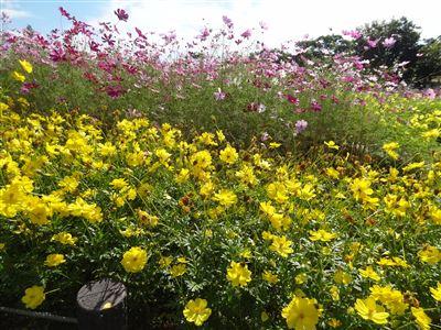 木曽三川公園138タワーパーク1