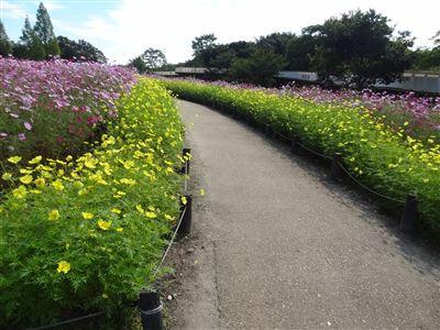 木曽三川公園138タワーパーク6