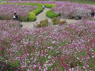 木曽三川公園138タワーパーク7
