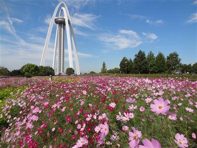 木曽三川公園138タワーパーク4