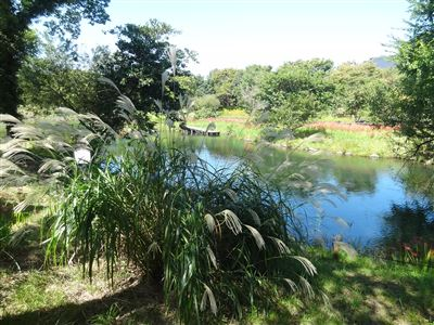 河川環境楽園木曽川水園7