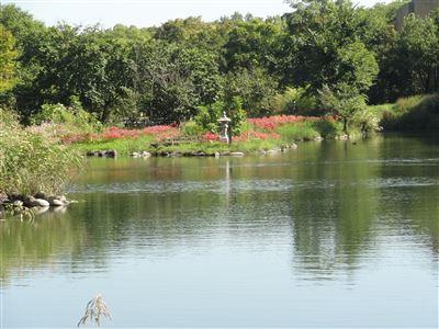 河川環境楽園木曽川水園3